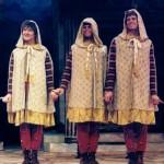 proteans cloaks front 150x150