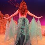 Ariel Mermaid back 150x150